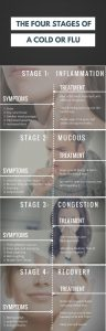 the stages of a flu or cold